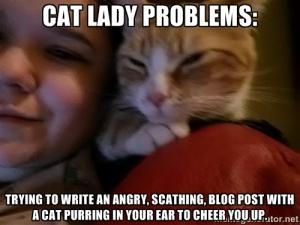 cat lady problems meme 1 blog