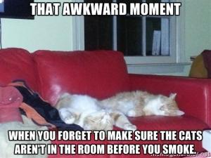 finished stoner cats